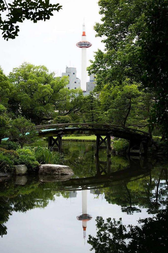 涼しげな夏の日本庭園へ